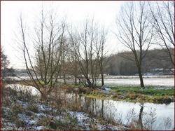 River Waveney in Winter