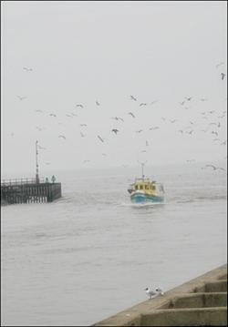 March 2009, Walberswick