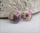 Magenta Dragonfly Earrings (BWD06e)